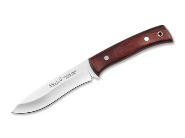 Feststehendes Messer, Braun, Feststehend, X50CrMoV15, Koralle
